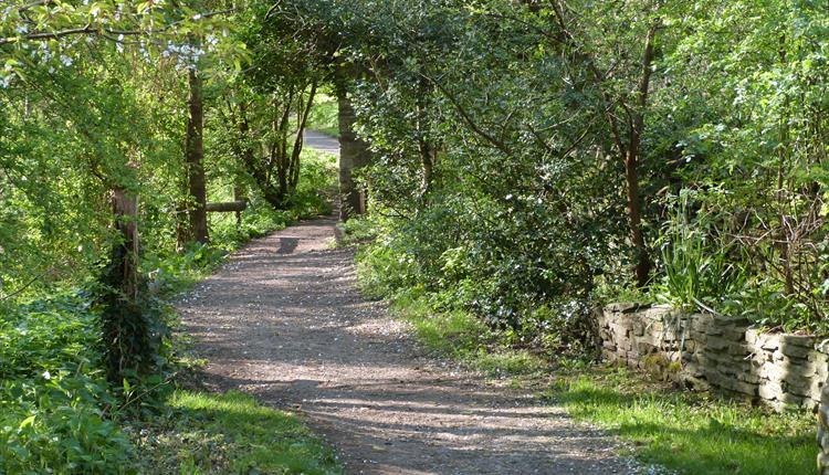Willsbridge Valley Nature Reserve