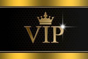 Bury Hill Farm VIP Guests